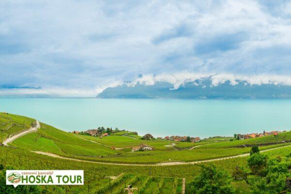 Ženevské jezero a vinice