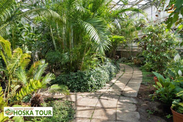 Skleníky v botanické zahradě