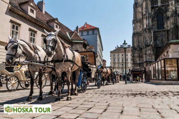 Vídeň – koňské povozy u katedrály svatého Štěpána