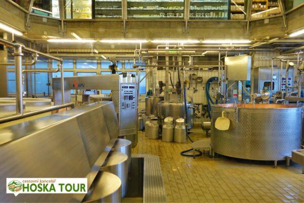 Výroba sýrů ementál – exkurze ve Švýcarsku